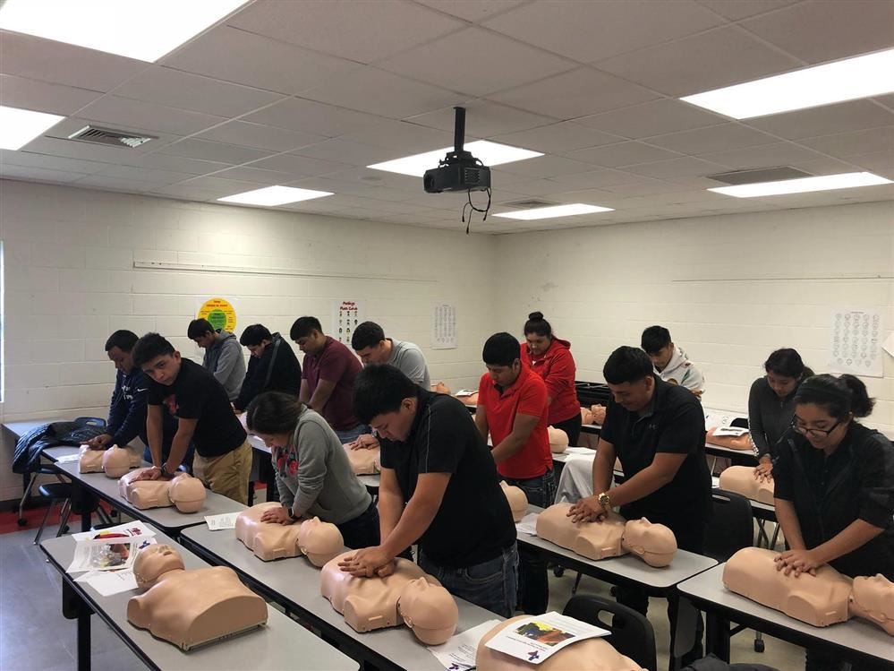 All Roma High seniors trained in CPR